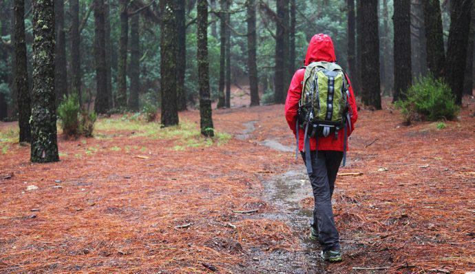Hiker wearing red jacket walks in wet forest