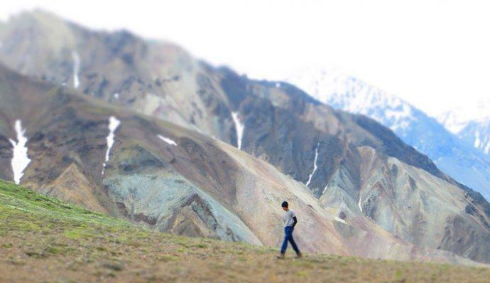 Tate walking across the Tundra in Denali National Park