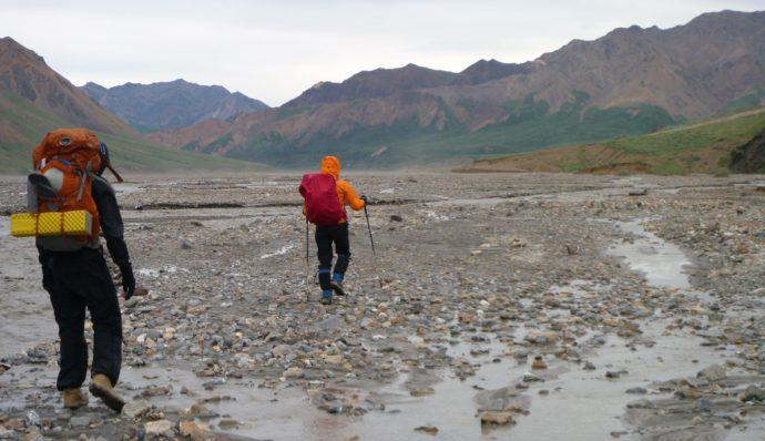 Hiking across a river bed in Denali National Park