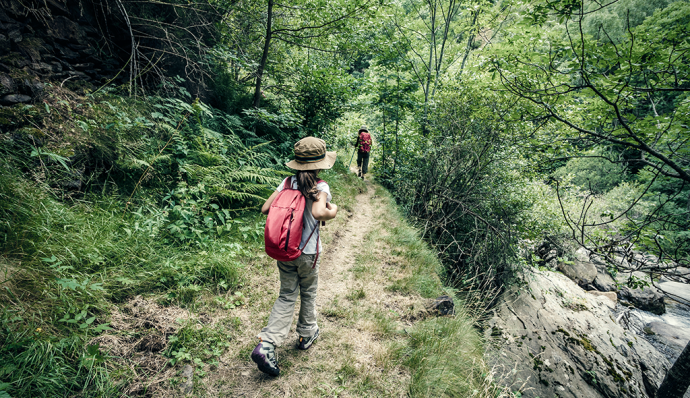 what to bring on a hike with children